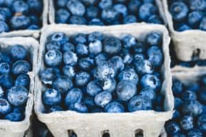 faster-metabolism-blueberries